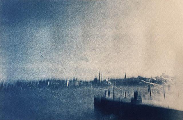 Somnium, Can Mengilibörü Cyanotype, Canson Montval, 35,3x23,45 cm, 2014